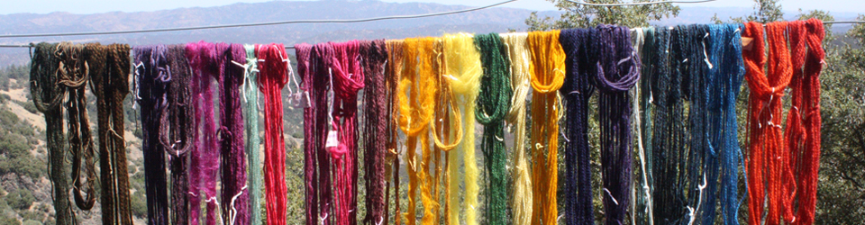 dyed yarn skeins hanging on a line