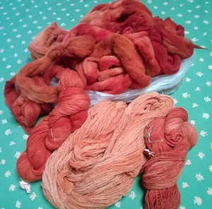Sharolene's madder dyed fiber. Madder was dug from Phyllis' and Sharolene's gardens.