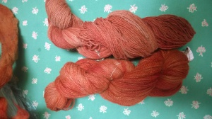 Madder from Phyllis' and Sharolene's garden were used to dye this yarn.