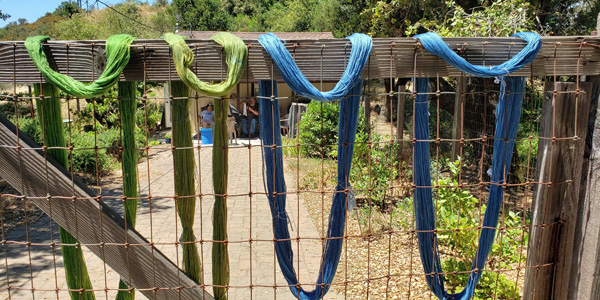 four skeins of blue and green yarn drying on the fence