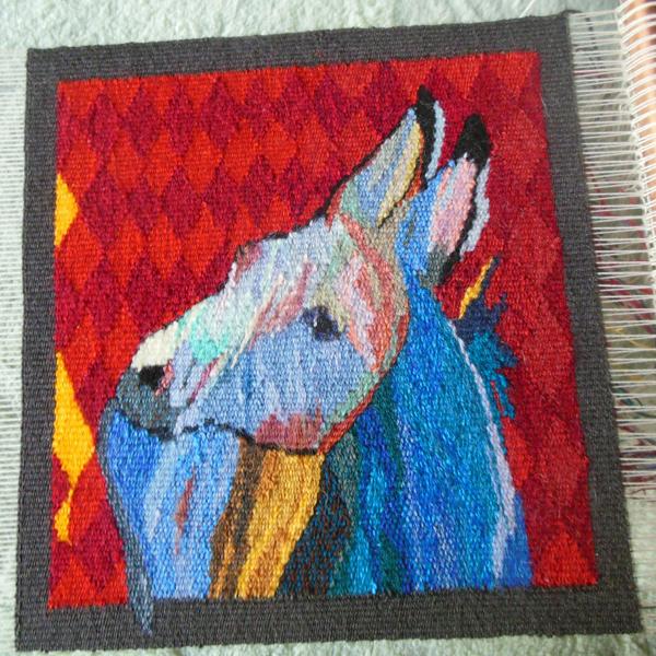 Sandy's tapestry burro